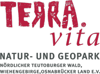 logo terravita